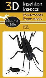 Insecten - 3D karton model
